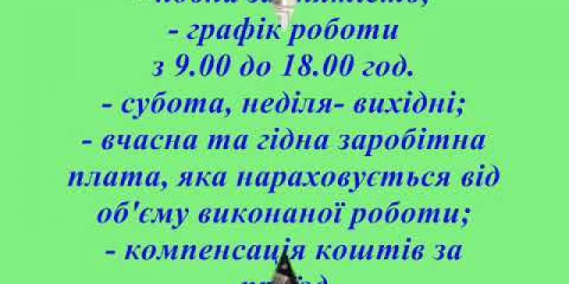 Вбудована мініатюра для Відеовакансія від ПП В. Думанчук